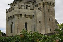 Castles, Cathederals, Halls and such / Castles and such / by Jennifer Martinsons