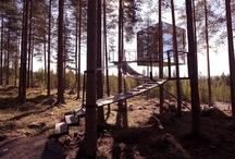 Отель на дереве- Tree Hotel