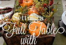 {Fall Everything} / Everything #fall related