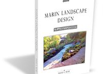 Mill Valley Landscape Designer And Mill Valley Landscape Architect / Mystical Landscapes is a Mill Valley based design and installation company that assists clients with all their landscape and site development needs. Landscape designer Dane Rose offers excellent garden design and installation. Mystical Landscapes is a top Mill Valley Landscape Architect and Mill Valley Landscape Designer.  Mill Valley Landscape Designer, Mill Valley Landscape Architect.  http://mysticallandscapes.com/mill-valley-ca-landscape-architects-designers-mill-valley-garden-design