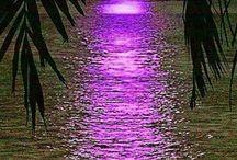 Nappalok és éjszakák