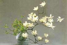 BLOOMS:  IKEBANA JAPANESE FLOWER ART / by SAGELAINE *