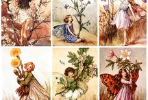 fairy Cicely Mary Barker シシリーメアリーパーカー