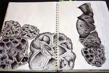 Hannah Spirals art