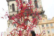 Свадебный фотограф в Праге Виктор Лом / Свадебный фотограф в Праге