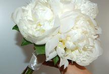 Flowers wedding / Flowers