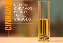 Cinnamon Blog Posts