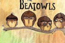 Owl Beatles