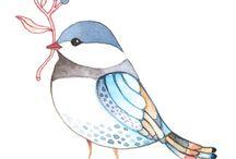 Birds / Photos of birds