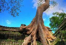 Places to go Cambodia