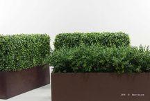 Изгороди искусственные. Green artificial fence. / Изгороди искусственные из самшита, травы, гортензии, герани, эвкалипта, бамбука, хвои, туи и многое другое. Можем изготовить любую изгородь по вашему желанию, а так же стенды и арки декоративные.