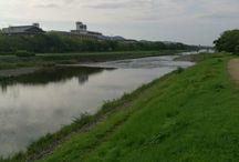 Kamo-Gawa River, Kyoto