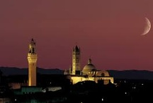 Siena / Some pictures of the beautiful city of Siena