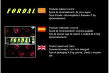 Josep Ràfols Vendrell / Cooperativa de Fruita de Subiràts