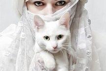 Muslimah Story