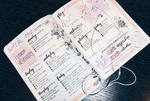 Winежедневник