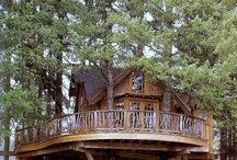 Treehouse / What i allways wanted is ... a treehouse