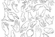 Proportions utiles pour dessiner une main