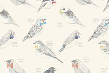 Pájaros en la cabeza/ birds