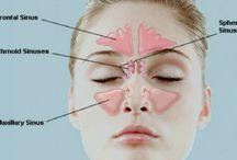 Sinus tips