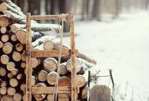 Cabin in the Woods / by Amy Elizabeth