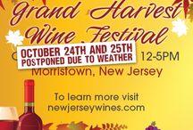 Festivals / The best wine festivals around