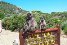 Backpacking through South Africa! / adventures, Backpacking through South Africa!