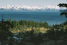 Alaska / by Amy Morse