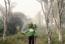 Pieter Hugo / Pieter Hugo (born 1976 in Johannesburg) is a photographic artist living in Cape Town.