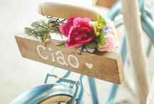 •°• Bikes in bloom •°•