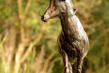 Bronze Sculpture - Sable / Bronze Sculpture - Sable