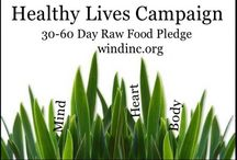"Healthy Lives Campaign / Visit: http://GoFundMe.com/HealthyLivesCampaign and join the 30-60 Day Raw Food Pledge. Share your journey and story with me. I'm excited to hear and to see your photos... Also visit: windinc.org ""WIND Initiatives"" to join me for the walkathon."