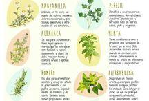 Alimentos con hierbas arimaticad