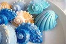 Sea shell soap / Soap