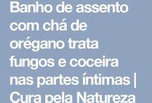 receitas da natureza