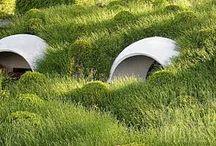 Landscape architecture and garden ideas