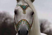 Equine Jewelry