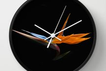 Clocks / by Michael Moriarty Photography & Social Media