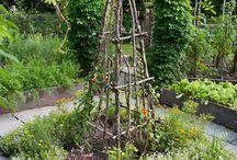 vysnívaná záhrada