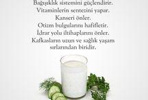 Sağlıklı Yaşama Dair Herşey