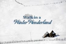 Winter Wonderland / You've prepared a winter wonderland adventure that will take you all the way to Romania to discover its beauty during winter season. #winter #wonderland #Romania #surprise