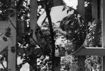 [ PHOTO + Vivian Maier ]