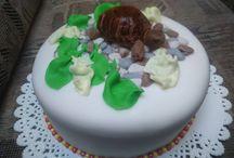 Moje dortování / dortů