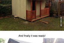 amazing !!!