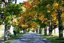 Automne à Victoriaville et sa région/Fall