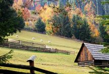 houses barns farms new england / by Alex Toce