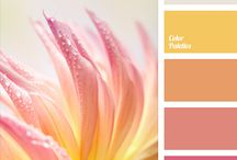 Color Inspiration 3