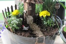 Hayley's Fairy Gardens / by Stacy Harrison-Butters