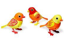 Digibirds,digi owls / Singing the life