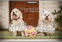 Aikin wedding